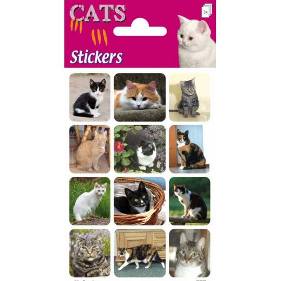 Katten stickers 3 vellen. drie stickervellen met daarop stickers van allerlei verschillende katten.