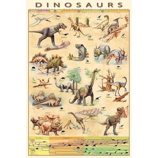 Feest versiering dinosaurussen poster