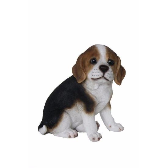 Beeldje beagle hond pup type 1. dit beeld van een beagle puppy is gemaakt van polystone en heeft een formaat ...